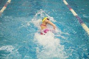 cheetahswimmer